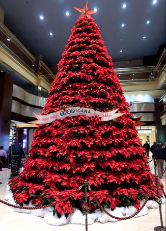 Poinsettia Christmas tree at Tropicana Atlantic City
