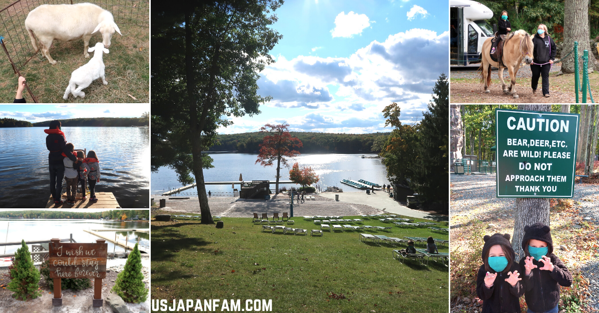 US Japan Fam Family Vacation at Woodloch Resort Review - Animals and Outdoor Activities